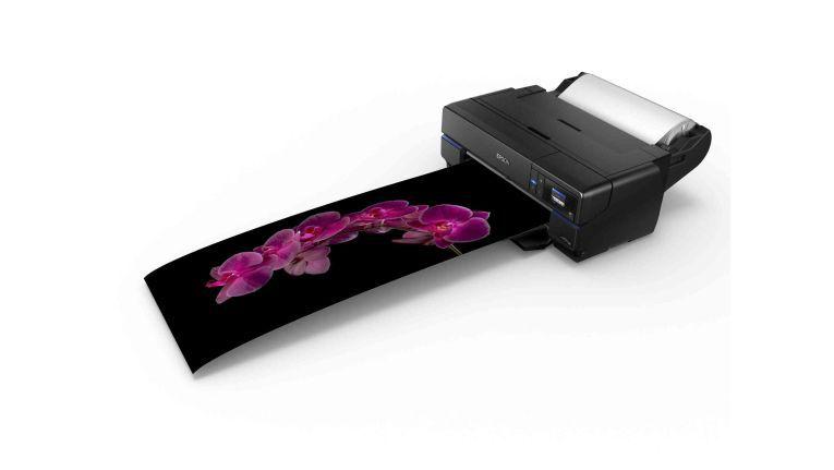 Epson SureColor SC P800: Rollendruck bis zu 17 Zoll Breite.