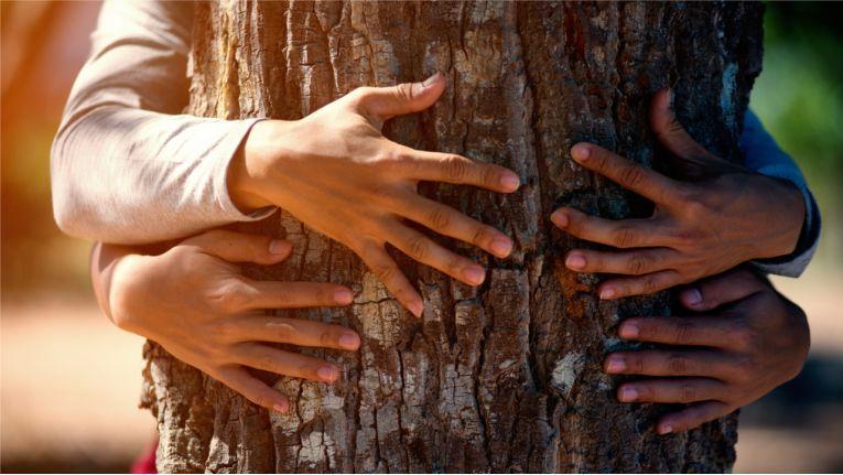 Nachhaltigkeit betrifft viele Aspekte des Lebens aller Menschen. Doch ist nicht in erster Linie die Industrie gefragt?