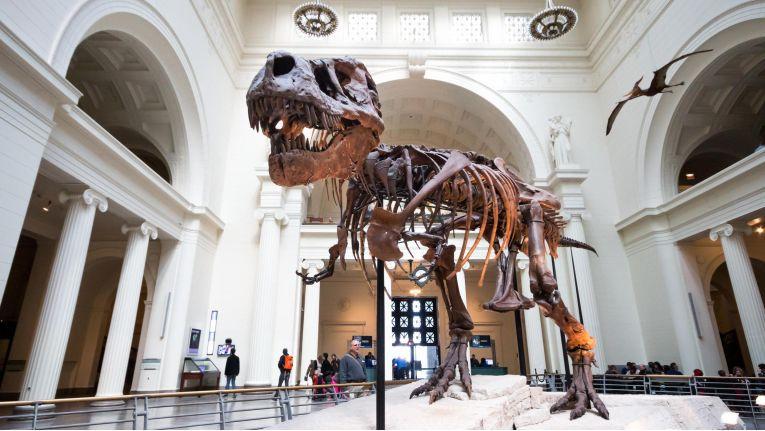 Auch in Museen spielt Augmented Reality eine immer wichtigere Rolle.