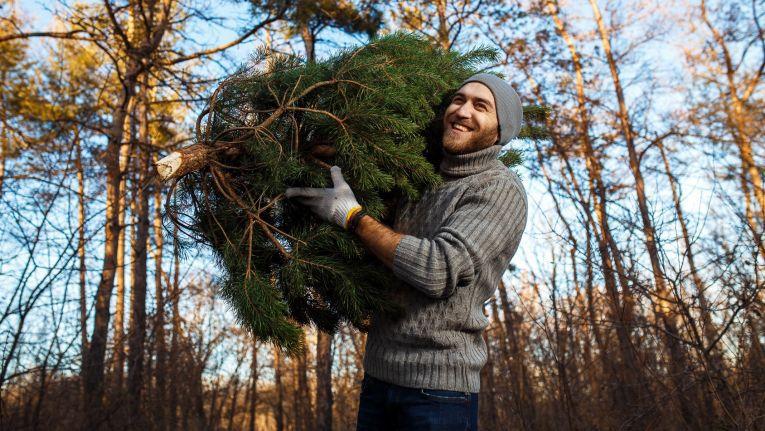 Weihnachten steht vor der Tür - aber wann findet man die besten Geschenkschnäppchen?