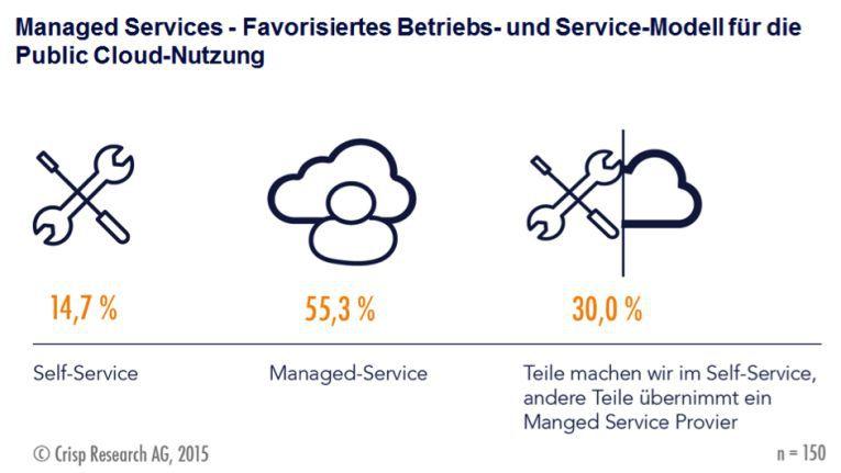 Die Public Cloud-Nutzung wird am wenigsten über Self-Services dargestellt.