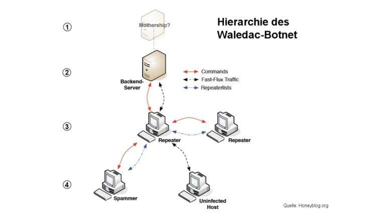 Hierarchie des Waledac-Botnetzes